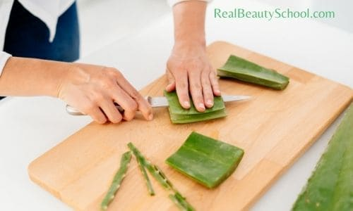 how to use aloe vera for hair growth - Aloe vera benefits for hair - Aleo vera hair masks DIY - homemade Aloe vera gel