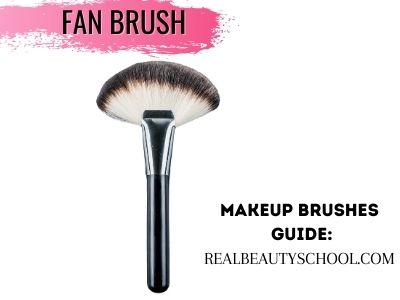 how to usefan brush for beginners best makeup brushes for beginners, complete makeup brushes list and their uses