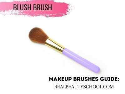list of makeup brushes for beginners and their uses
