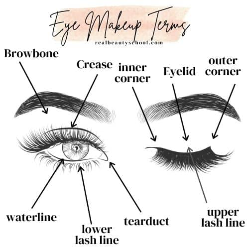 Eye parts for makeup, eye makeup terminology, eye makeup terms, how to apply makeup for beginners