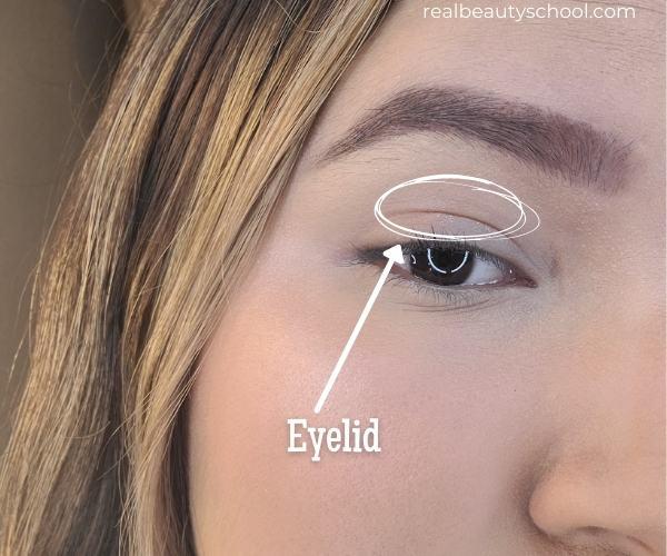 Eye makeup terminology