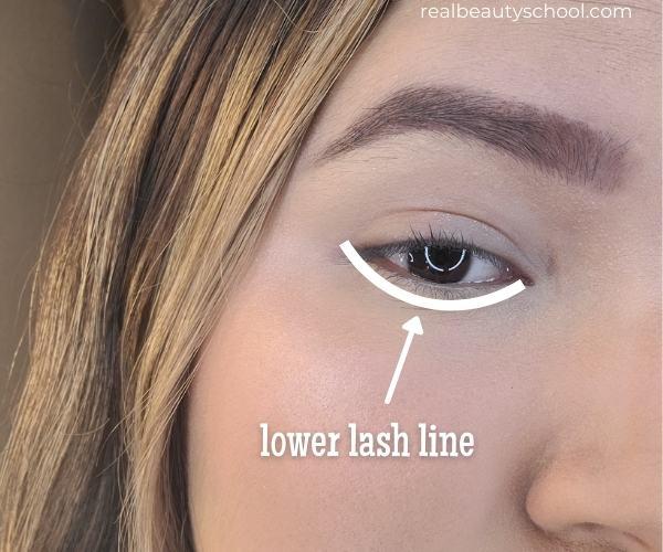 Eye makeup parts, lower lash line
