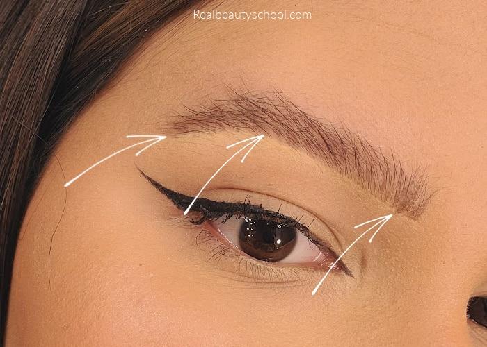bushy eyebrows tutorial